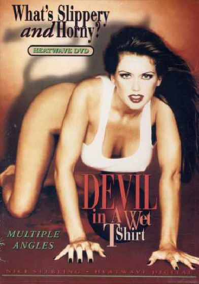 Devil in a Wet T-Shirt (1995) - Original Poster - vintagepornfun.com