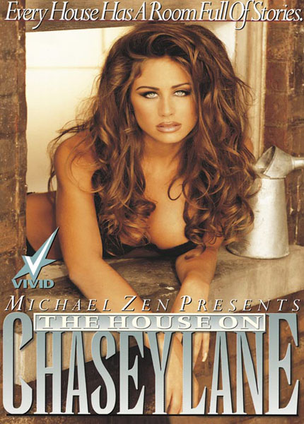 The House on Chasey Lane (1995) - Original Poster - vintagepornfun.com
