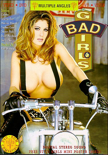 Bad Girls 6: Ridin' Into Town (1995) - Original Poster - vintagepornfun.com